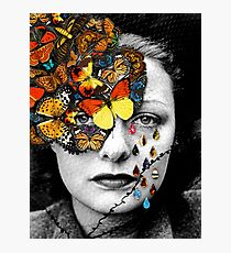 Butterfly Jewel. Photographic Print