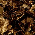 Heap of Leaves by Avalinart