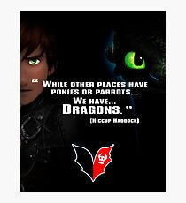 How to train you Dragon Photographic Print
