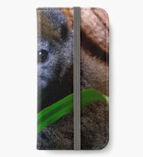 Gentle Lemur and Reed iPhone Wallet/Case/Skin