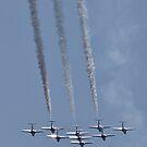 Canada's Snowbird in formation... by Scott Howard