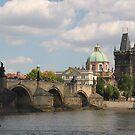 Charles Bridge - Karluv Most by Elena Skvortsova