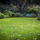 empty bench by annmarie-f