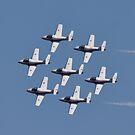 Canada's Snowbirds - formation flying  by Scott Howard