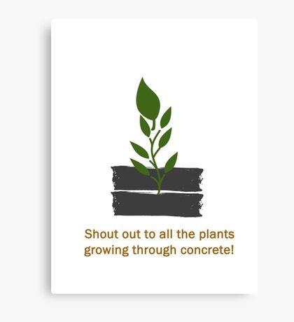 Plants Through Concrete Canvas Print