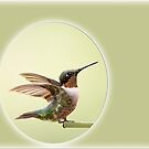 Hummingbird with Fluttering Wings by Bonnie T.  Barry
