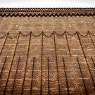The Wall Espanyol by FelipeLodi