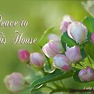 Peace to This House ~ Luke 10:5c by Robin Clifton