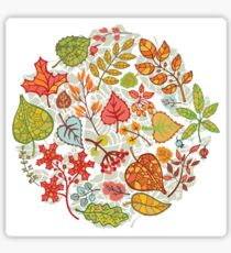 Circle composition with Autumn leaves,branches,berries Sticker