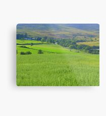 Donegal In The Summertime Metal Print