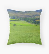 Donegal In The Summertime Throw Pillow