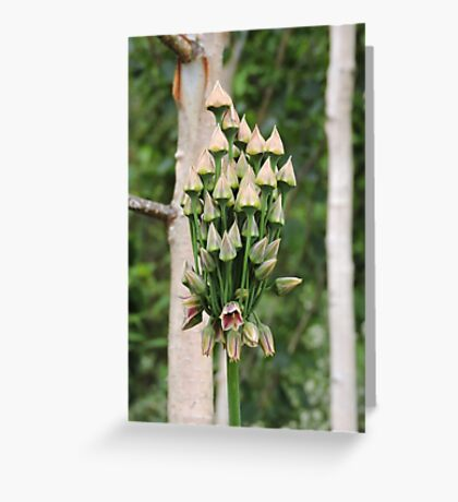 The Fairy Castle Greeting Card