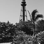 Sanibel Light by Bill Wetmore