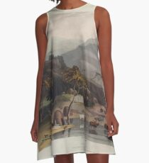 African Scenery and Animals Samuel and William Daniell 1804 0021 A Kaffer Village_jpg A-Line Dress