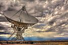 Very Large Array by Bill Wetmore