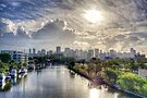 Miami Morning by Bill Wetmore