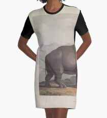 African Scenery and Animals Samuel and William Daniell 1804 0089 The African Rhinoceros_jpg Graphic T-Shirt Dress