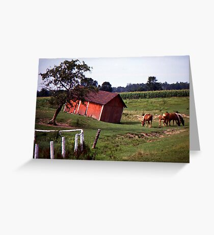 Barn with Horses Greeting Card
