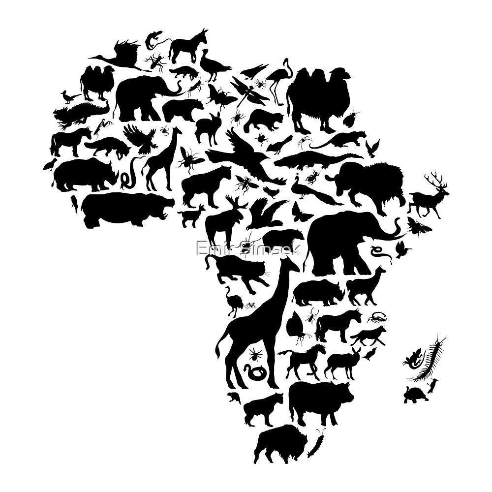 Animals of Africa by Emir Simsek