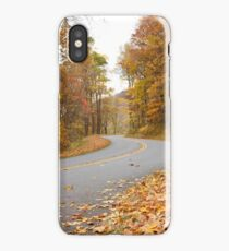 Fall on the Parkway iPhone Case/Skin