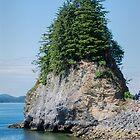 Rocky, Tree Crowned Islet, Ketchikan, Alska by Gerda Grice