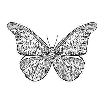 Beautiful black white butterfly by palomita222