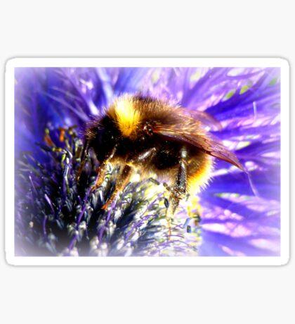 Bumblebee on Thistle Sticker