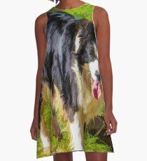 Border Collie - Color A-Line Dress