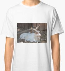 moose at the zoo Classic T-Shirt