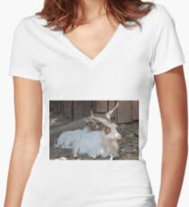 moose at the zoo Women's Fitted V-Neck T-Shirt