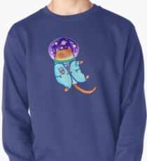 Cosmocat Pullover