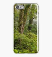 Yarra Ranges Rainforest iPhone Case/Skin