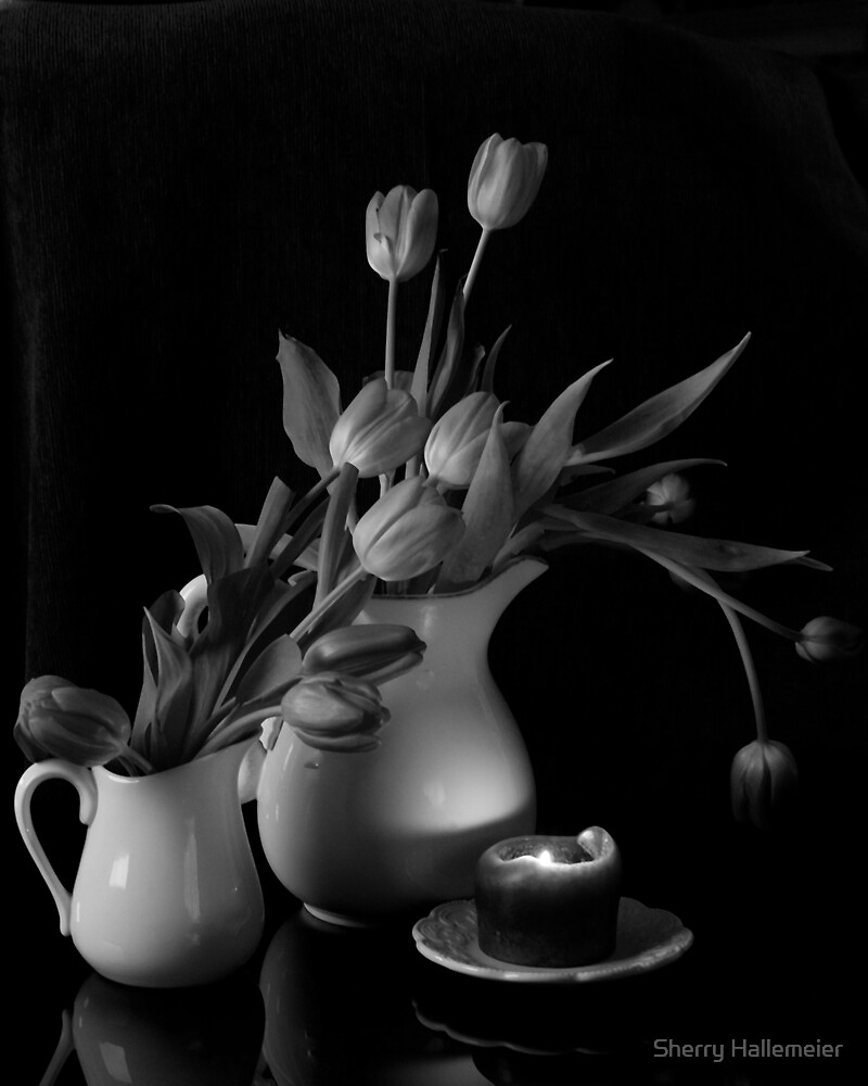 The Beauty of Tulips in Black and White by Sherry Hallemeier