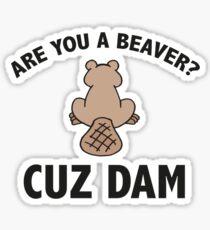 Are You A Beaver? Cuz Dam Sticker