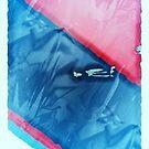Blue Meets Red - Creased  by Ashoka Chowta