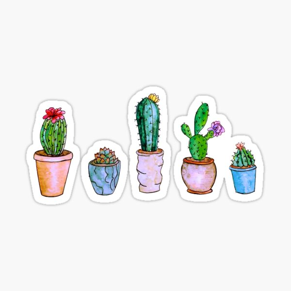 Watercolour Cacti Sticker