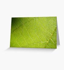 Leaf Macro Greeting Card
