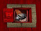 Mao's Red Room Sonata  by Alex Preiss