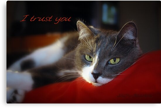I Trust You © Vicki Ferrari by Vicki Ferrari