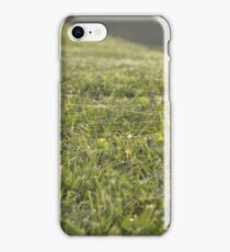 Spider net iPhone Case/Skin
