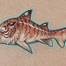 Tiger Shark (Tabby Shark?) by justteejay