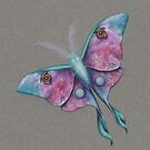 CosMoth (Moth of the Cosmos) by justteejay