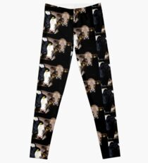 ' We All Want Our Picture Taken' Leggings