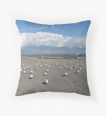 Lake Erie, Hamburg, NY ~ The Charge of the Light-Breasted Brigade Throw Pillow