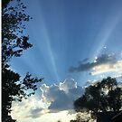 Sky Lights by trisha22