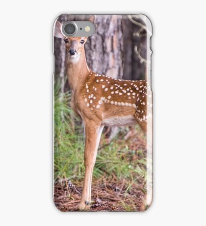 Fawn in August iPhone Case/Skin