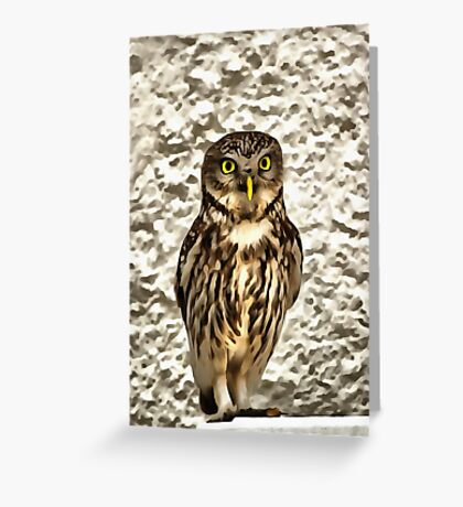 Small Owl In Camouflage Greeting Card