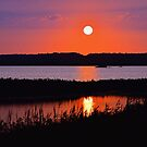 Sunset Over The Wetlands by Sharon Woerner