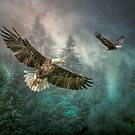 Valley Of The Eagles by Brian Tarr