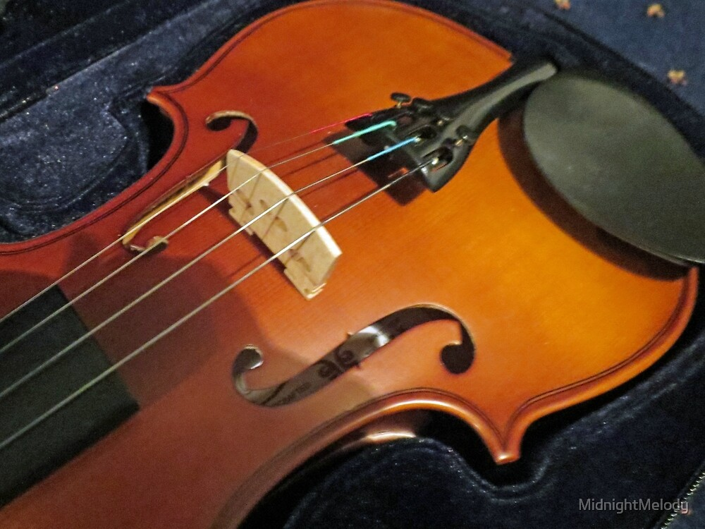 Violin Bridge and F Holes by MidnightMelody
